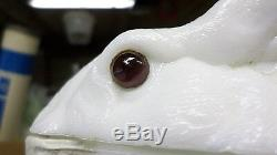 2075D Antq 1886 Atterbury Covered Rabbit Dish Milk Glass withGlass Eyes ROUGH COND